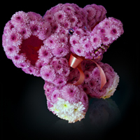 Идея бизнеса - игрушки из живых цветов